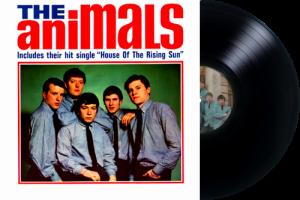 The-Animals Nasl