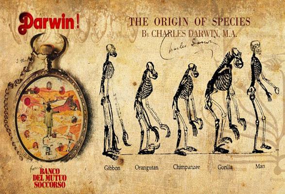 Darwin BAnco 1