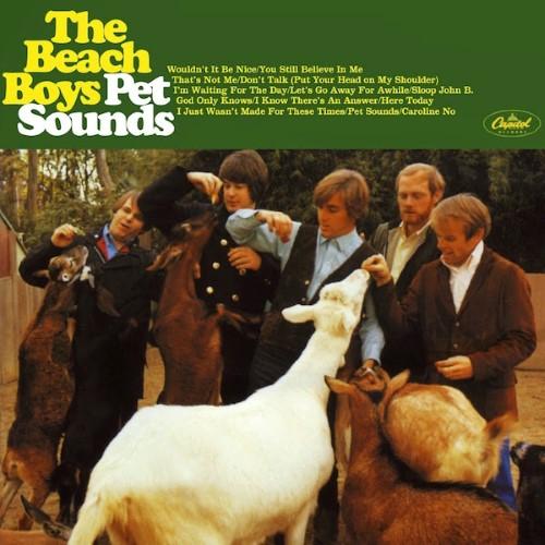 02-the-beach-boys-pet-sounds
